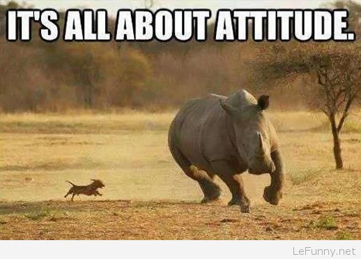 its-all-about-attitude