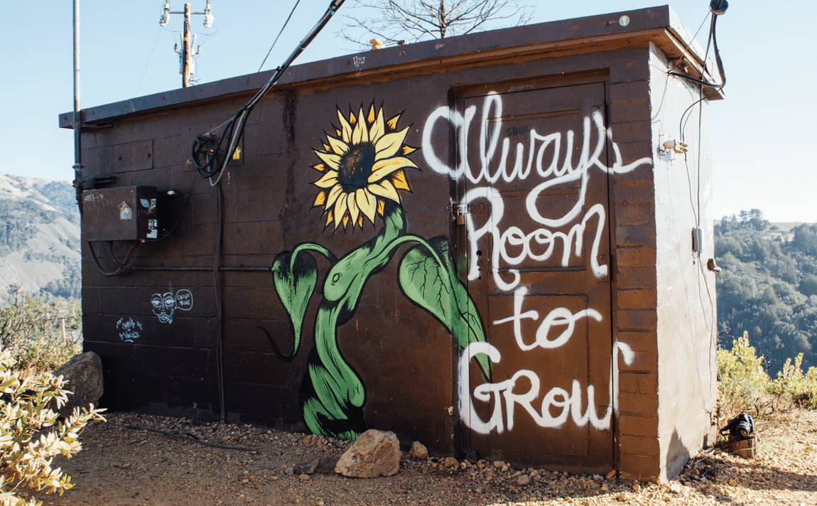 outback shed that reads 'always room to grow'